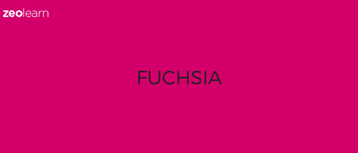 Google working on a new Operating System, Fuchsia