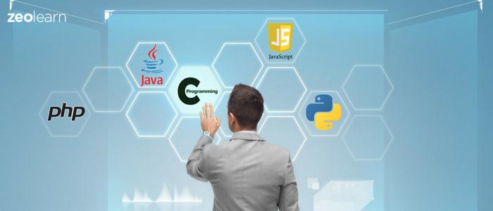 Popular Programming Languages for Budding Developers